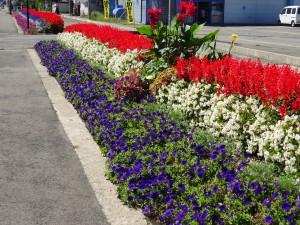 十文字歩道の環境美化を考える会