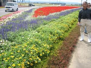 南内越花いっぱいボランティアグループ