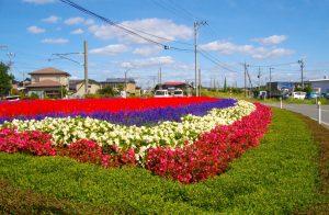 由利本荘市・南内越花いっぱいボランティアグループ