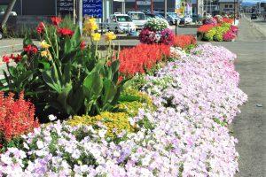 横手市・十文字歩道の環境美化を考える会