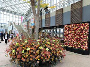第40回秋田県花の祭典(セリオンリスタ)
